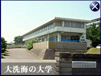 大洗海の大学